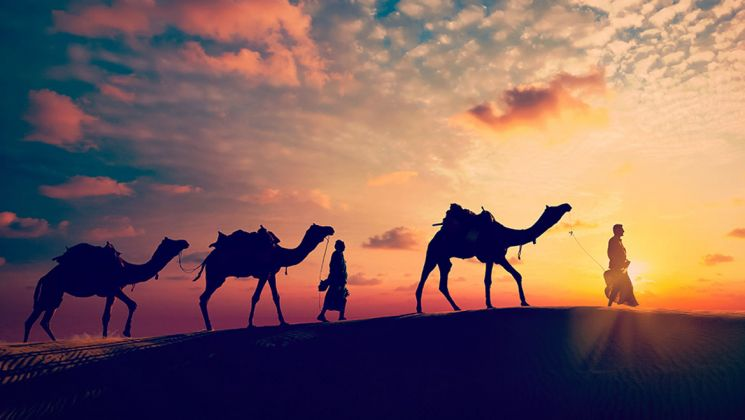 Rajasthan Tour Package - 13 Night 14 Days